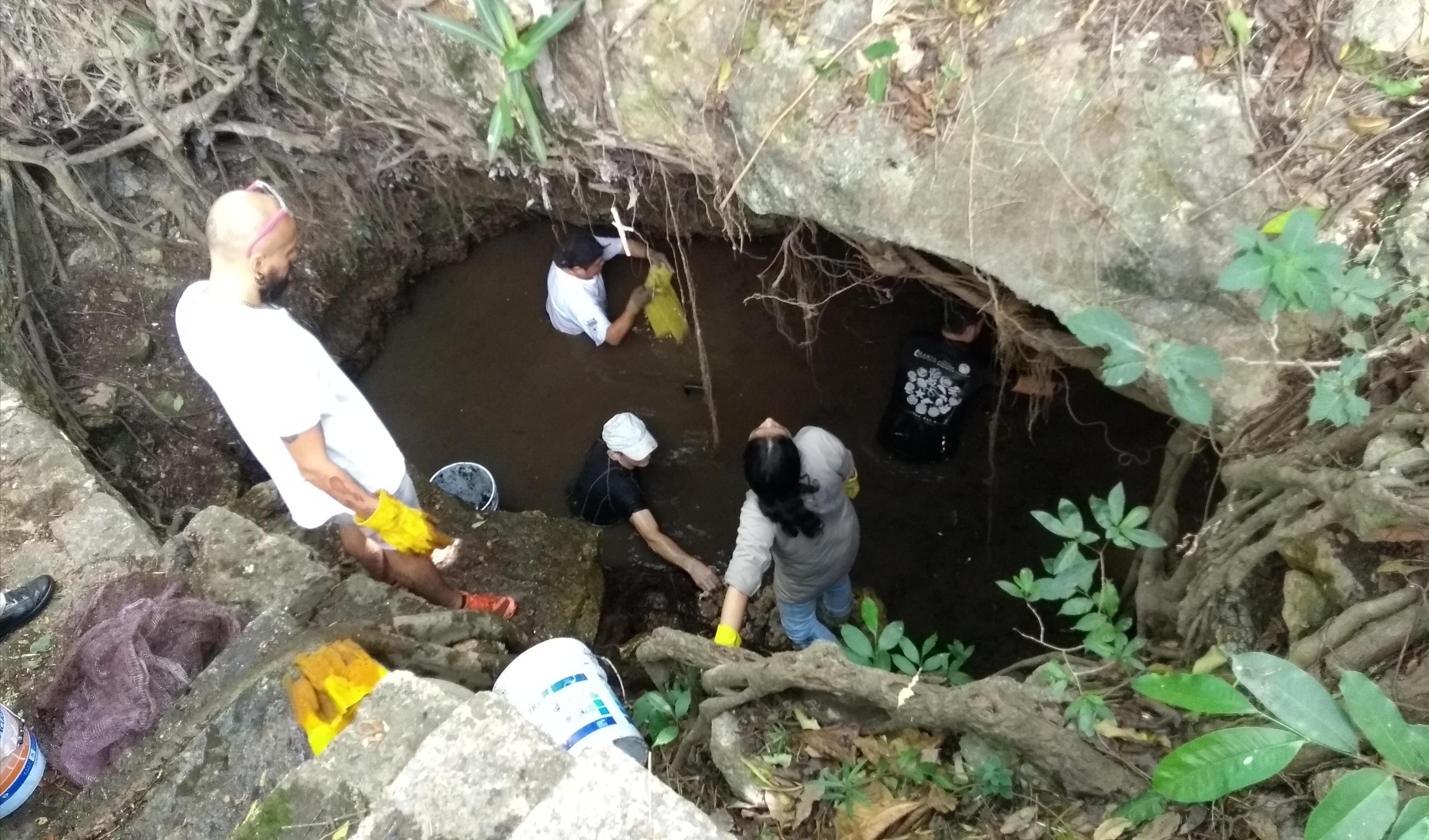 Sanean parque y cenote de Cholul, extranjeros incluidos