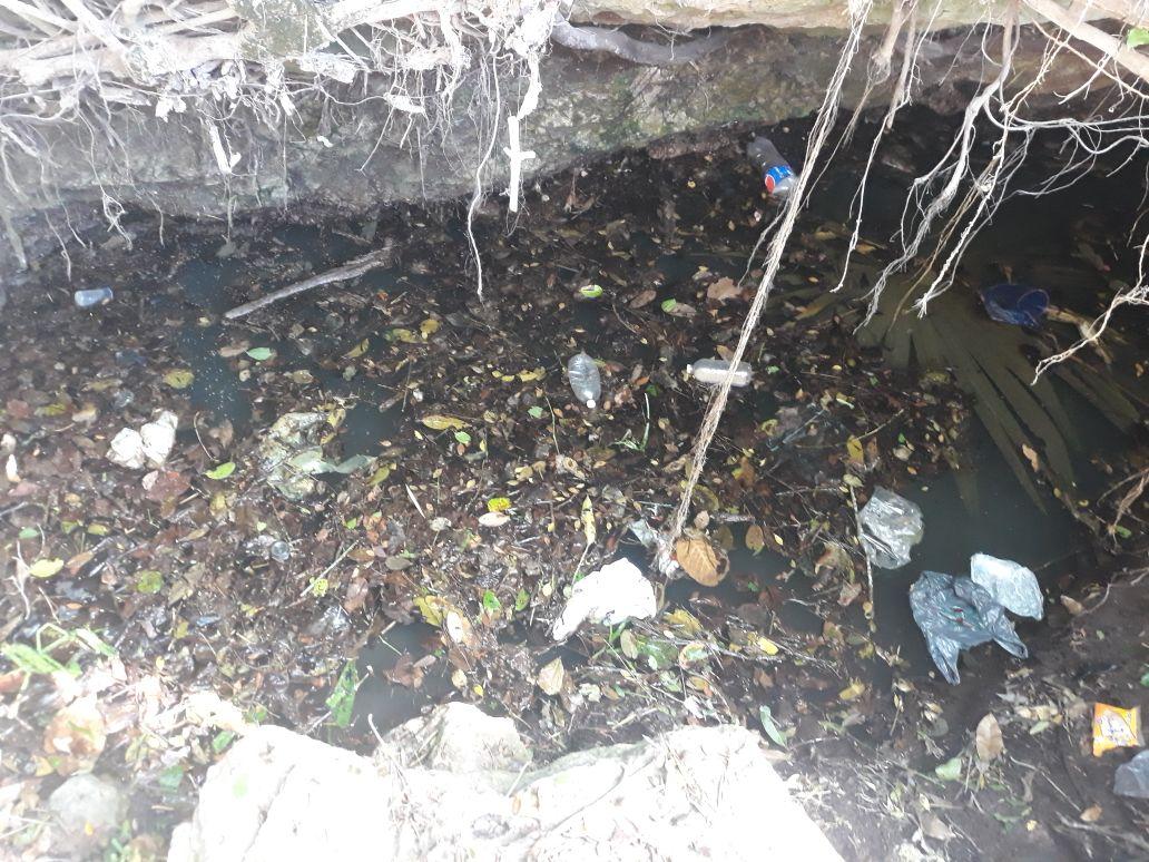 Vulnerables a contaminación las 140 grutas y cenotes de Mérida