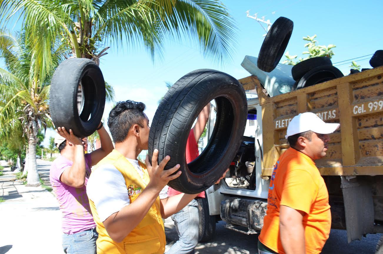 Desmantelan en Mérida 677 toneladas de potenciales reservorios de moscos