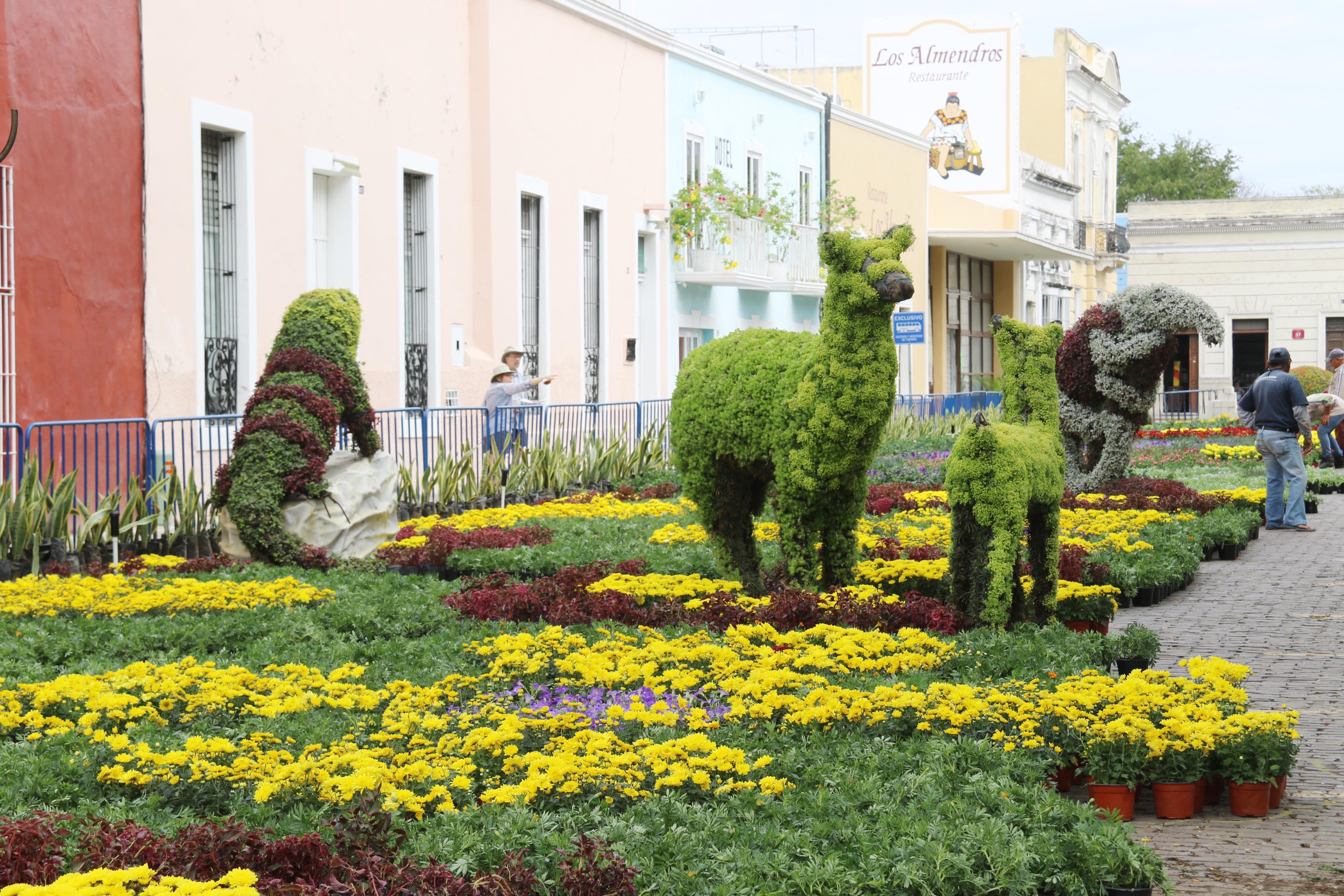 Anuncian tercera edición del Camino de Flores en Parque de La Mejorada