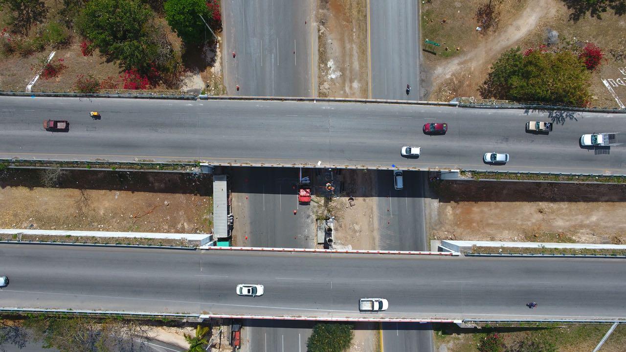 Así quedó el puente a Progreso: fotos antes y después del arboricidio