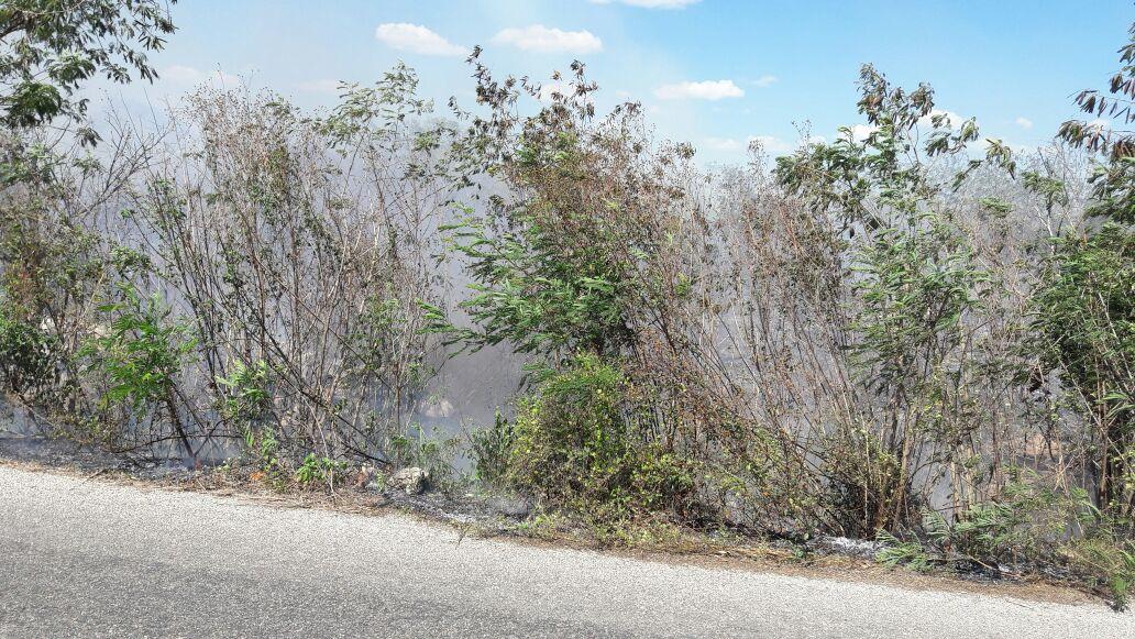 Apenas en el comienzo: 130 reportes de incendios en Yucatán