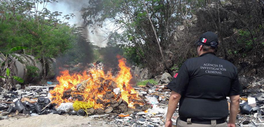 PGR Yucatán destruye 'minicasinos' y pepino de mar; incinera droga