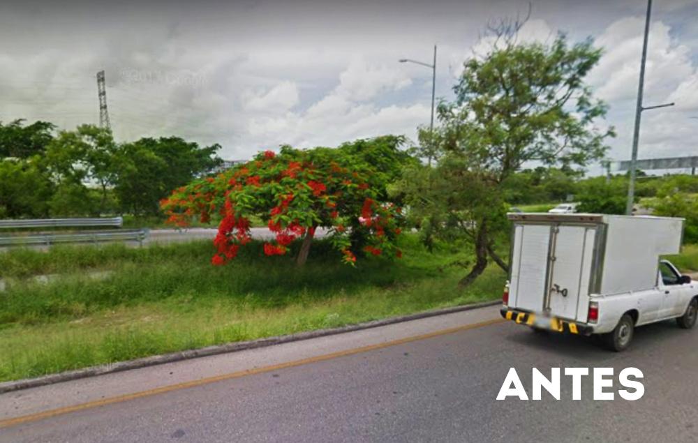 Toma 9 con árboles google maps lista
