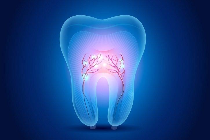 UNAM crea banco de células madre de dientes