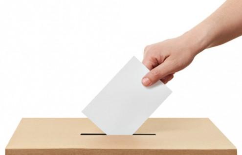 Elecciones libres y riesgo de polarización, preocupaciones de IP