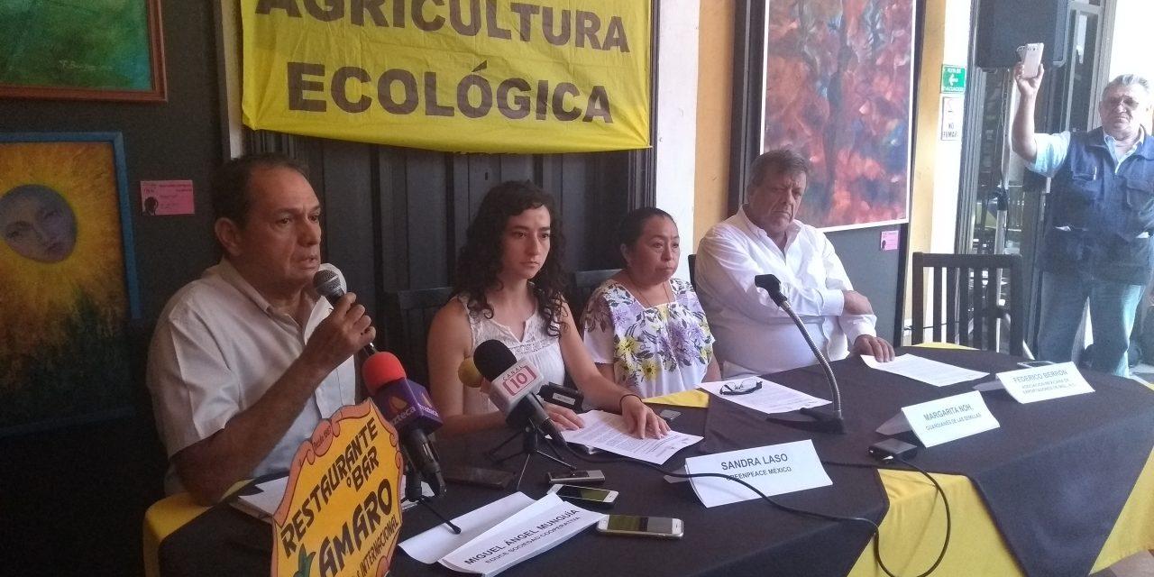 Biodiversidad y cultivos orgánicos, a la agenda electoral