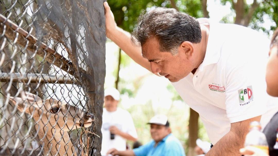 Impostergable cuidado a animales y medio ambiente: Caballero Durán