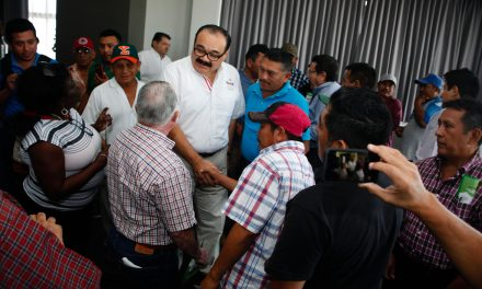 Yucatán debe recuperar su potencial apícola, afirma Ramírez Marín