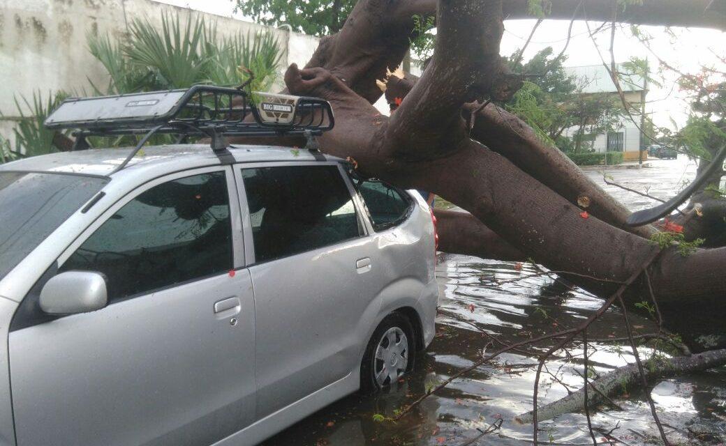 Este miércoles, tormentas fuertes en Yucatán; norte, para el fin de semana (video)