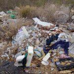 Día Mundial de la Tierra: 1a Ecocarrera en Mérida para limpiar un parque (video)