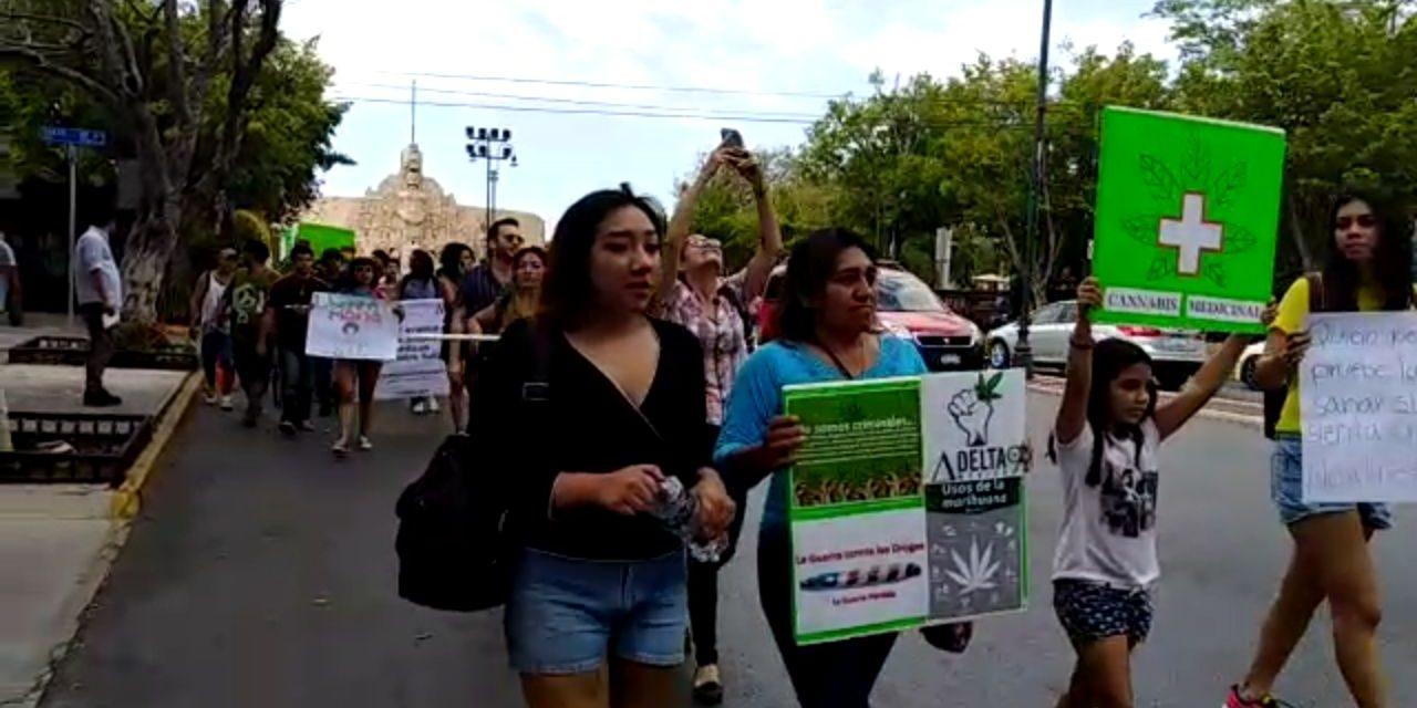 """Se manifiestan en Mérida por """"cannabis legal y cultivo ya"""""""