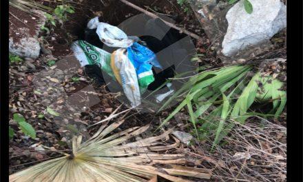 Desmantelan base de adiestramiento criminal en Cancún