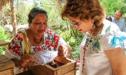 Apicultores de comisarías de Mérida reciben insumos