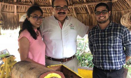 """Campaña con causa de Ramírez Marín: """"¡Salvemos a las abejas!"""""""