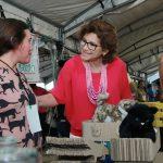 Se consolida la Expo #MéridaBlancaEmprende en beneficio de los emprendedores