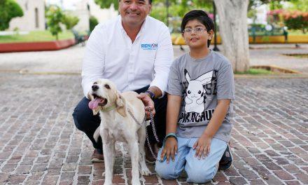 Crearemos una app para  adopción y búsqueda de animales de compañía, Renán Barrera