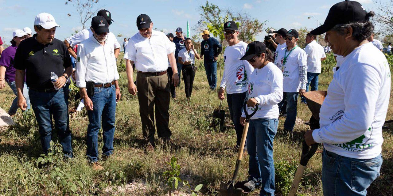 Urgen reducir consumos de plásticos y cuidar árboles