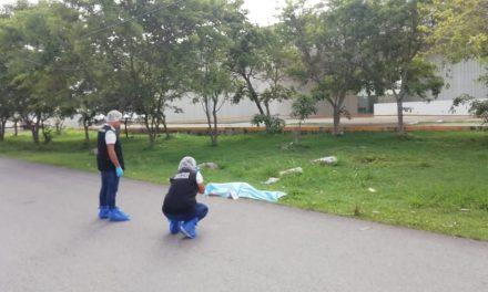Peatón muere en periférico Mérida; conductor conversaba por celular