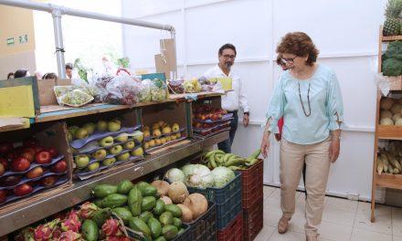 Mérida traduce ahorros en más inversiones en infraestructura pública