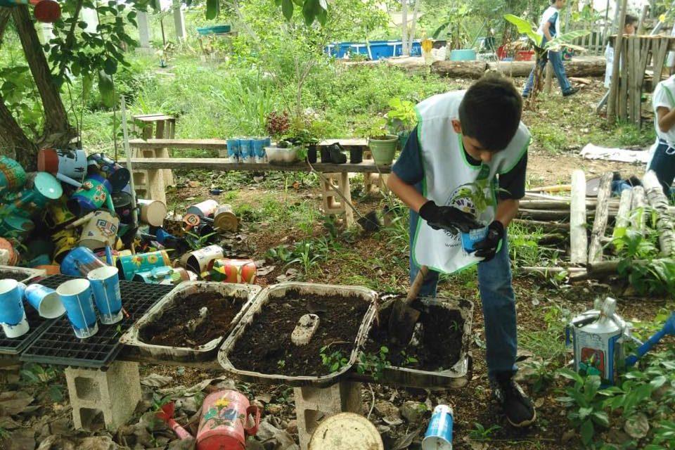 Gana 'Hunab, proyecto de vida', de Yucatán, premio nacional Mérito Ecológico 2018 (video)