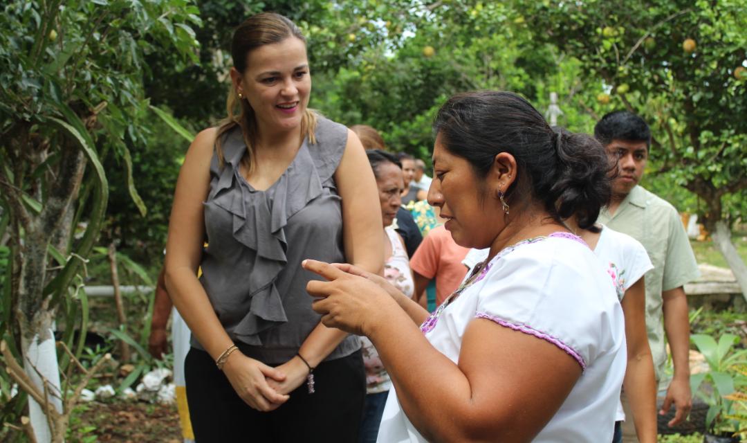 Va Cecilia Patrón a última instancia a defender mayoría