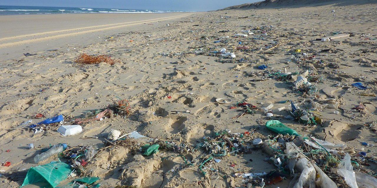 Estos son los estados de México que han prohibido el uso de bolsas de plástico y popotes