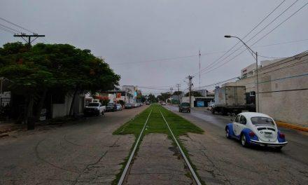 Tren Maya, con precios de $18,000 por viaje.- futuro director de Fonatur (video)