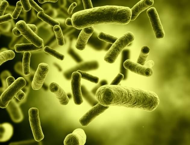 Aplicarán en Mérida amplia estrategia de higiene sanitaria