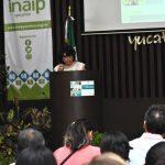 Emite Inaip Yucatán criterio para designación de titulares de transparencia