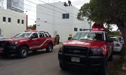 Electrocutado en negocio al norte de Mérida