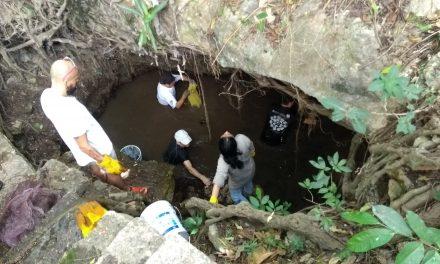 Urgencia de ciudadanos activos frente deterioro ambiental