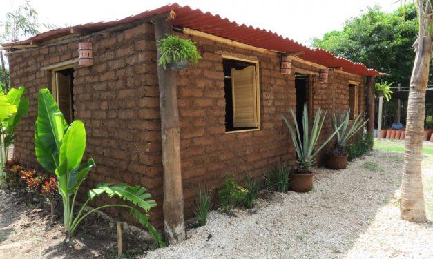 ¿Que Yucatán crea combustible con sargazo?… ¡QRoo construye casas con el alga!