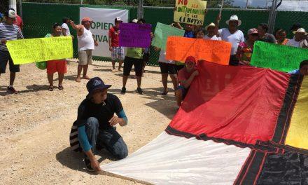 Homún: 'Clausuran' pobladores granja de cerdos… Gobierno les cierra 5 cenotes (videos)