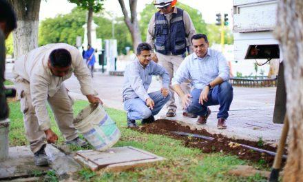 Aplican plan de mejora en servicios públicos de Mérida
