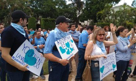 No vamos a permitir cultura de la muerte.- grupos antiaborto, en Mérida (videos)