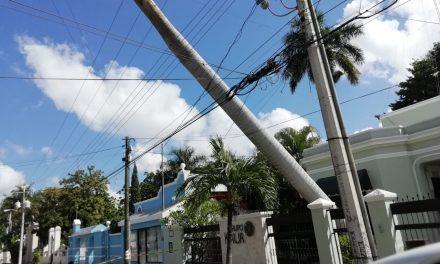 Cae tronco sobre cableado eléctrico y afecta a usuarios de CFE