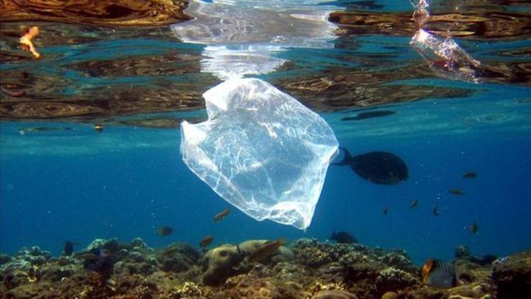 La realidad es que ya comes plástico