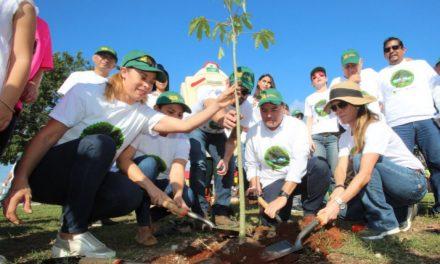 Mérida con más árboles, un compromiso compartido