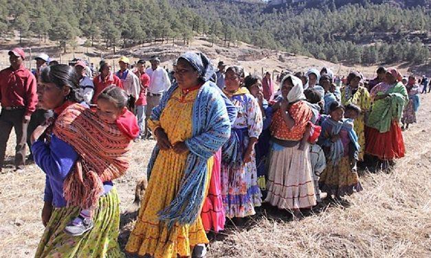 Norte a sur: Los indígenas y la cuarta transformación de México