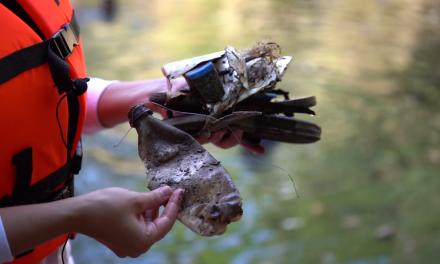 ¿Llantas de bicicleta con todo y rin?… mira qué sacaron de cenote de Kaua, Yucatán (video)