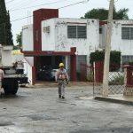 Árboles y postes caídos, saldo del 'miércoles de norte' en Mérida