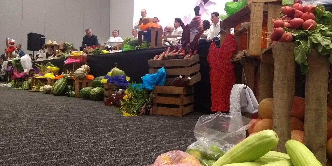 No es broma: 'nace' en Yucatán agrupación agrícola de 'la 4a transformación'