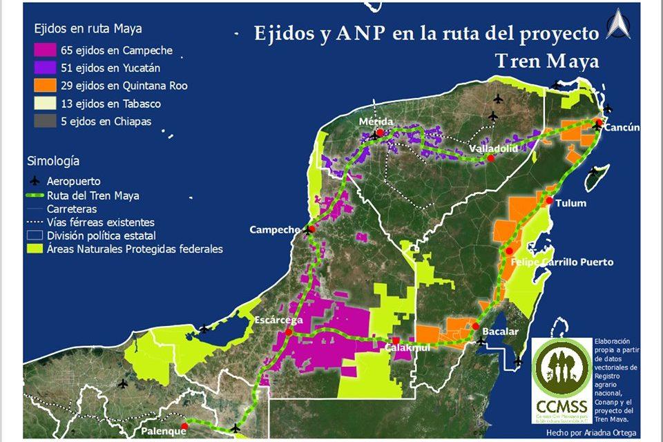 Tren Maya atravesará 41 municipios del sureste
