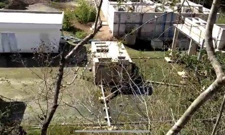 Laguna de aguas negras atenta contra ambiente y salud (Vídeo)