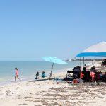 Festival de la Veda mejora ingresos de pescadores y prestadores de servicios