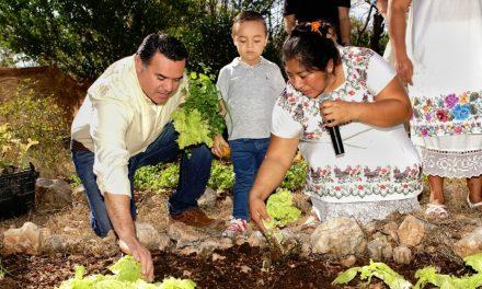 Con proyectos productivos en Mérida empoderan a mujeres rurales