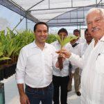 Gobierno de Yucatán y SEDER revisan programas estratégicos para campo