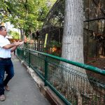 Reproducción animal en condiciones óptimas en zoológico del Centenario