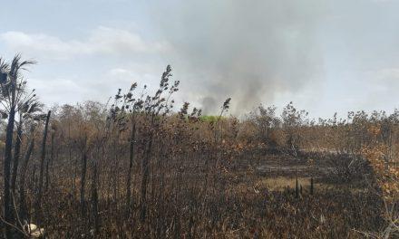 Combate incendio Campeche, en 'ecorregión' que abarca Yucatán